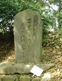 Basyoukuhi